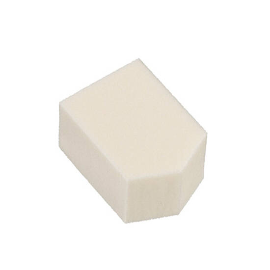 pentagon sponge
